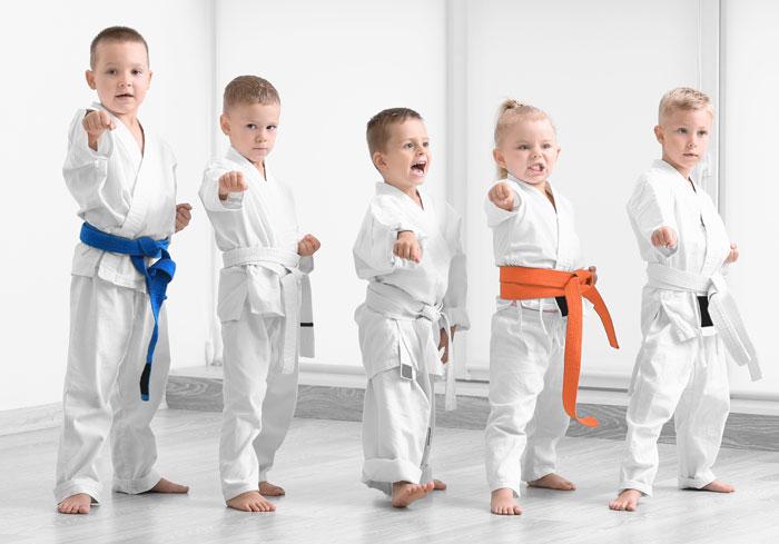 Karate Shropshire